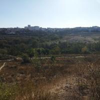Некрополь Херсонеса