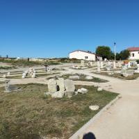 Различные древние артефакты и фрагменты