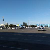 На площади перед аэропортом в основном таксисты