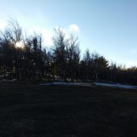 Снег на плато Ай-Петри в середине марта