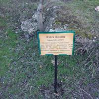 Это могилы героев войны; табличек здесь немало, многие с фотографиями
