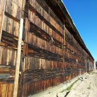 Стена канувшего в историю Маломорского рыбзавода