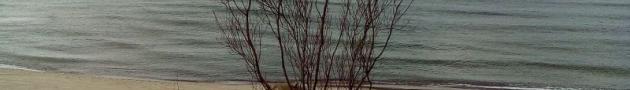 Балтийская коса, дюны, море